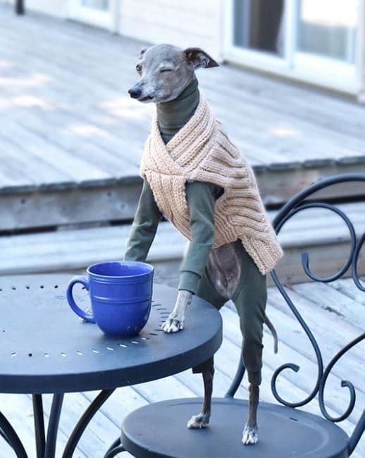 tika-morning-coffee