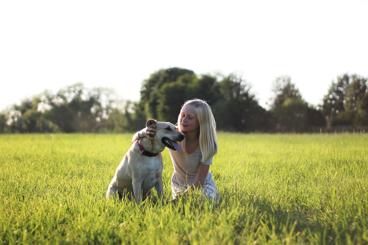 child, dog, nature
